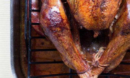 Instant Pot Chicken Stock